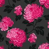 Image detail for -... Wallpapers Ltd) Fine Décor Bloom Pink and Black - FD13888 Pattern