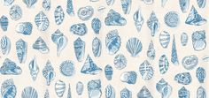 Monterey (839-T-6710) - Thibaut Wallpapers - This design has lots of different shells, with delicate patterns on a randomly spotted background – shown in blue on white. Wide width Vinyl Coated Please request sample for true colour match.Delivery for this American wallcovering is 7-10 working days.