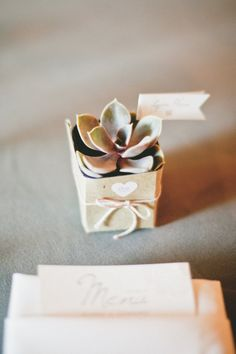 What a beautiful, simple, and sweet succulent favor on of our customers used for their wedding.