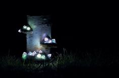 Shroom in the Room is a group of Lithuanian artists who craft natural-looking, one of a kind night lamps out of fallen timber, tree mushrooms and, most importantly, hand-picked crystals and mineral…