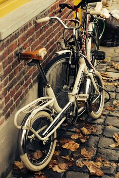 Vintage Bianchi Folding Bike