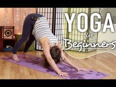 Yoga For Beginners - Downward Dog Break Down || Beginner Yoga - YouTube