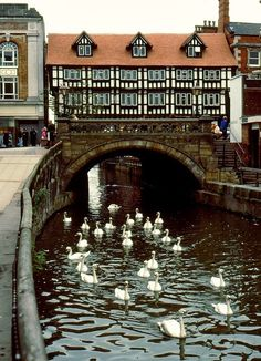 The High Bridge in Lincoln, is the oldest bridge in the United Kingdom which still has buildings on it.