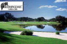 $15 for 18 Holes with Cart at Bloomingdale Golfers Club in Valrico near Tampa, Florida!