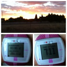 @SharonTonkin Day 4 fast paced walk this morning - the dog was on a mission