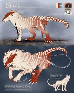 how to draw a manticore step by step