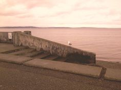 Alki Beach, Seattle, Washington....some memories here!~