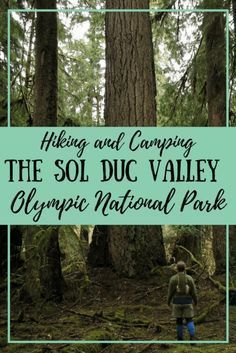 Exploring Olympic National Park? The Sol Duc Valley is a gem for families, with waterfalls, easy day hikes, awesome camping, and the fantastic Sol Duc Hot Springs