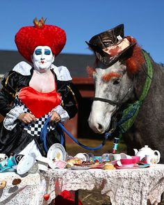 Horse Show Costume Contest Idea. The Mad hatter! Horse Halloween Costumes, Cute Costumes, Costume Ideas, Horse Fancy Dress, Donkey Costume, Madd Hatter, Horse Riding Clothes, Horse Camp, Horse Quotes