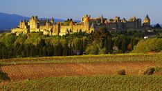 Carcassonne FR