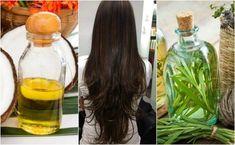 Homemade treatment of coconut oil and rosemary oil to make hair grow Peau D'orange, Homemade Coconut Oil, Excessive Hair Loss, Cabello Hair, Make Hair Grow, Hair Care Recipes, Hair Mask For Growth, Damaged Hair Repair, Hair Oil