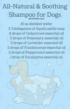 Best diy dog shampoo young living Ideas #diy | Essential ... Dogs Young Living Essential Oils: Vita Flex Points for Dogs: More - Essential oils can deliver many benefits if they are diffused the right way. Learn the best ways to diffuse essential oils and maximise their power. Essential oils are powerful extracts though to have powerful healing properties.