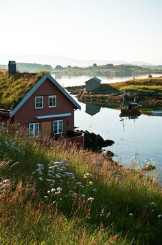 Ultimate Guide to the Best Fjords to Visit in Norway Places Around The World, Travel Around The World, Around The Worlds, Beautiful World, Beautiful Places, Places To Travel, Places To Go, Cabins And Cottages, Cabins In The Woods