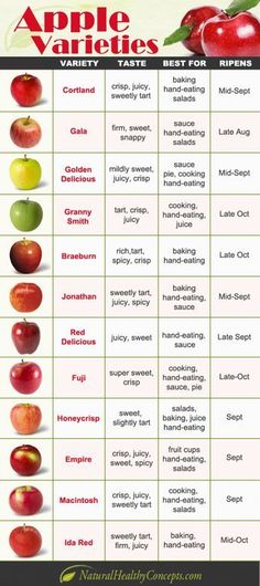 Apple varieties infographic from Natural Healthy Concepts. Learn more about apple varieties today! Healthy Snacks, Healthy Eating, Healthy Recipes, Vegetarian Recipes, Thai Recipes, Indian Recipes, Shrimp Recipes, Vegetable Recipes, Fruit Recipes
