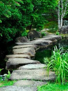 stepping stones . . .