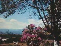 Calling on Costa Rica (1947) - short - Traveltalks