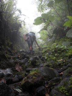"""Vulcan Maderas, Isla de Ometepe, Nicaragua. """"Hiking up into the clouds surrounded by jungle on Volcán Maderas is such a great experience that reaching the summit brings mixed emotions – you don't want the adventure to end."""" http://www.lonelyplanet.com/nicaragua/isla-de-ometepe (V)"""