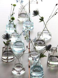 Holmegaard : Flora