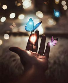 aesthetic, aesthetics, and beautiful image Scenery Wallpaper, Cute Wallpaper Backgrounds, Love Wallpaper, Pretty Wallpapers, Colorful Wallpaper, Galaxy Wallpaper, Creative Photography, Nature Photography, Blue Butterfly Wallpaper