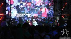 Danyelus-Lujo vs Crackero-Homer (Semifinal) – A Cara De Perro Zoo (ACDP) 2vs2 2015 -  Danyelus-Lujo vs Crackero-Homer (Semifinal) – A Cara De Perro Zoo (ACDP) 2vs2 2015 - http://batallasderap.net/danyelus-lujo-vs-crackero-homer-semifinal-a-cara-de-perro-zoo-acdp-2vs2-2015/  #rap #hiphop #freestyle