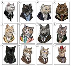 Doctor Mew, who? https://www.etsy.com/listing/125559127/doctor-mew-postcard-prints