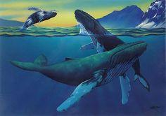 humpback whale, ballena jorobada