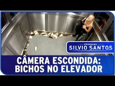 Today we have a Brazilian Elevator Bug Prank from the hidden Camera show from Silvio Santos. I am not sure if this program has had any serious accident already but I can imagine that in other countries at least a few law suits would have been filed. Enjoy the uncensored prank :)  http://TheDailyLaugh.net The Digital Newspaper for all your laughing needs.