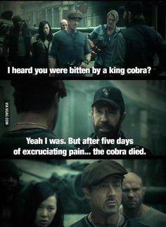 Cobra died!
