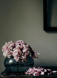 peonies | Hans Blomquist Stylist