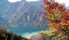 Naturschutzgebiet Offensee Kaiser Franz Josef, Strand, Mountains, Water, Travel, Camping, Outdoor, Nature Reserve, River