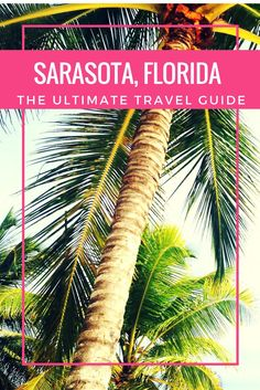 Discover 7 unique things to do in Sarasota, Florida!