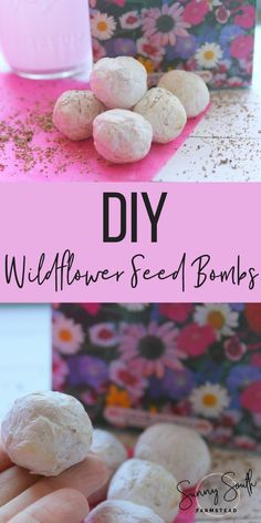 If you are ready to add a spruce if gorgeous-ness (because that's totally a word) to your yard, these seed bombs take the cake! They are a super fun and easy craft to make and it's so fun and exciting to see what pops up out of the ground after you plant them!