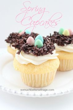 Spring Cupcakes + Recipe | So Much Better With Age