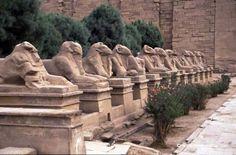 Ägypten Luxor  www.reisedoktor.com