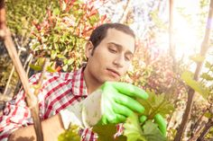9 Things Your Landscape Designer Wishes You Knew/