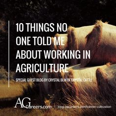 A. This website contains a blog that covers the different aspects of having a career in the agriculture sector. B. This website gives students an idea of what to expect when entering into a career in the agriculture sector.