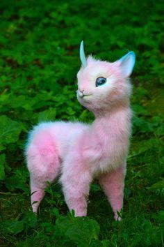 Cute Fantasy Creatures, Cute Creatures, Mythical Creatures, Baby Animals Pictures, Cute Baby Animals, Mystical Animals, Animal Drawings, Cute Art, Art Dolls