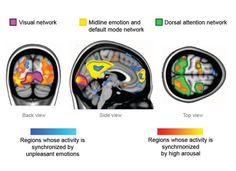Synchronized brains: Feeling strong emotions makes people's brains 'tick together'