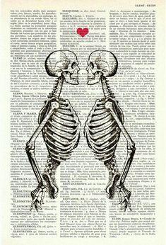 Wall art Skeleton Couple Love art gift husband gift by PRRINT Skeleton Love, Skeleton Art, Art Amour, Human Anatomy Art, Grafik Design, Antique Books, Skull Art, Couple Gifts, Dark Art