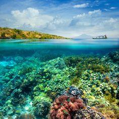 Gili Meno Island, Indonesia. http://www.zunayoga.com/travel-gili-meno.html