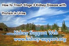 How to treat stage 3 kidney disease with protein in urine ? In clinic, kidney disease will induce many symptoms, especially the advanced stage of this disease. Protein leakage as one of the common symptoms it may appear in any stage of kidney disease in the form of foamy,and almost all the patient will experience it. So the ways to relieve it concerned with many people, not only the patient but also the people around them.