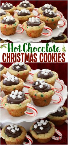 Darlings are getting their moist cookies delighted