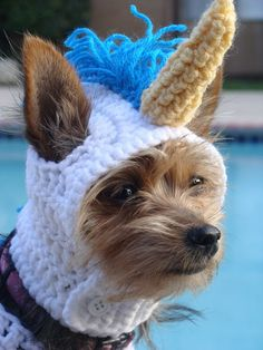 Dear auntie Erica I love you with my whole furry soul.Would you please make me this for christmas I would like a rainbow mane. Also my retarded brother too pleeease and thank you. i seriously have been using my puppy pads. Love Rosie