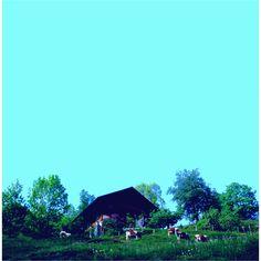 hut 01 2009 C-print, plexiglas 31.3×31.3cm