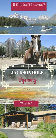 Grand Teton mountains, Yellowstone National Park, Four Seasons Resort, Jenny Lake Lodge, fishing on the Snake River- Jackson Hole is all that and a bag of chips!