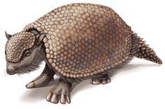 glyptodon.gif (450×300)
