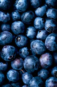 Spring Salad, Summer Salads, Rhubarb Rhubarb, Blue Fruits, Fruit Photography, Growing Veggies, Acai Berry, Blue Aesthetic, Backgrounds