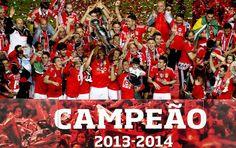 Parabéns ao Benfica  Benfica campeão 2013/2014 (Foto: EFE)