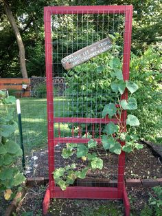 Made this out of a old screen door. Makes a great trellis for my garden!                                                                                                                                                                                 More