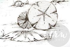 Sand Dollars Art Print, mandala art, sea shell drawing, pen and ink, home decor, print, nautical, beach, sea, black and white
